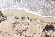 Heart formed by seashells on the beach - CMF00755