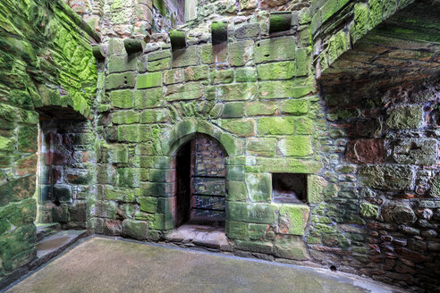 Great Britain, Scotland, Dumfries and Galloway, Caerlaverock Castle, green moss-grown wall - FOF09543