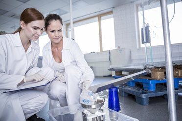 Two scientists working together in rain lab - WESTF23722