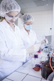 Two scientists working together in lab - WESTF23746