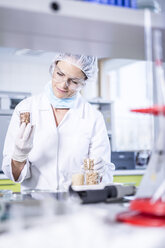 Scientist in lab examining seed samples - WESTF23755