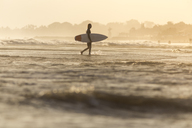 Indonesia, Bali, surfer carrying his surfboard into the sea at sunset - KNTF00918