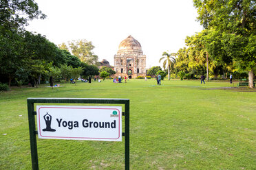 India, Delhi, New Delhi, Lodi gardens, meadow for yoga - NDF00690