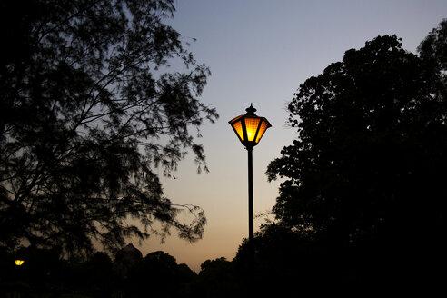 India, Delhi, New Delhi, Lodi gardens, park, lantern - NDF00693