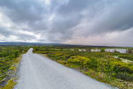Norway, Hedmark, Dovre, Fokstumyra Nature Reserve, Dovre National Park, country road - CSTF01500