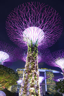 Singapore, Gardens by the bay, Supertree Grove, illuminated at night - VT00606