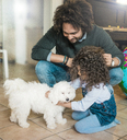 Father and daughter playing with a little dog at home - MOEF00328