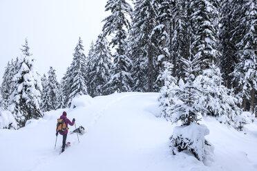 Austria, Altenmarkt-Zauchensee, young woman with dog on ski tour in winter forest - HHF05533