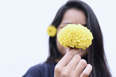Obscured face of a woman holding a yellow flower - IGGF00194