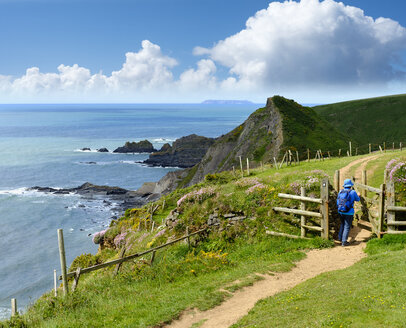 Great Britain, England, Devon, Hartland, Hartland Quay, Female hiker opening gate, coastal path - SIEF07617