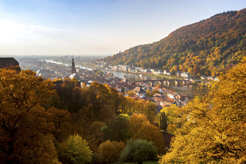 Germany, Baden-Wuerttemberg, Heidelberg,  City view in autumn - PUF00953