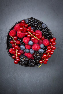 Wild berries in bowl - LVF06444
