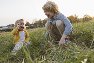 Brother and his little sister screaming on a meadow - KMKF00076