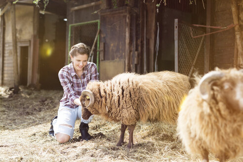Smiling woman caring for sheep on a farm - SHKF00798