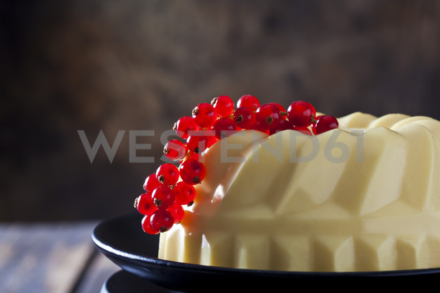 Custard with red currants on plate - CSF28555