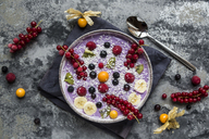 Yogurt with fruits, blueberry, red currants, raspberry, kiwi, banane, physalis - SARF03426