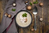 Creme of mushroom soup - LVF06459