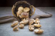 Organic shitake mushrooms in basket and on stone - LVF06466