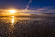Great Britain, Scotland, Solway Firth, mud flats, sunrise - SMAF00883