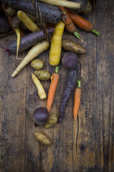 Winter vegetables, carrot, beetroot, potato and parsnip - LVF06476