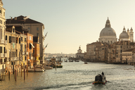 Italy, Veneto, Venice, Canal Grande in the morning - FCF01323