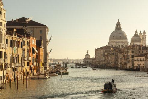 Italy, Veneto, Venice, Canal Grande in the morning - FCF01323