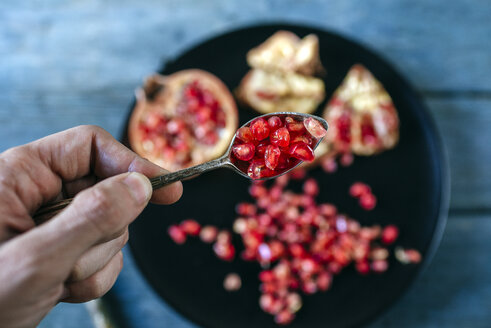 Man's hand holding a tea spoon of pomegranate seed - KIJF01787