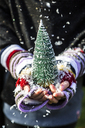 Girl's hands holding a toy Christmas tree, close up - SARF03446