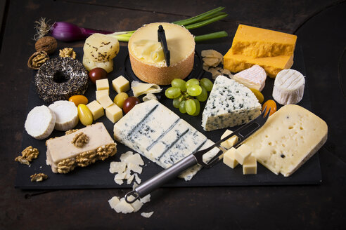 Cheese Platter, cheddar, tete de moine, gorgonzola, goat cheese, french sheep cheese, butter cheese, blue cheese, processed cheese with walnut, pepper cheese, hand cheese, gouda, parmesan - MAEF12470