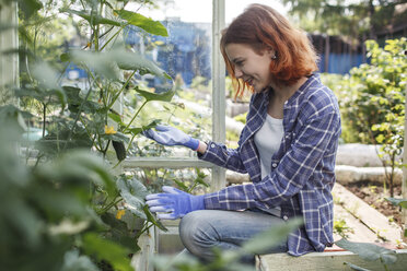Smiling young woman looking at plants in a greenhouse - VPIF00268