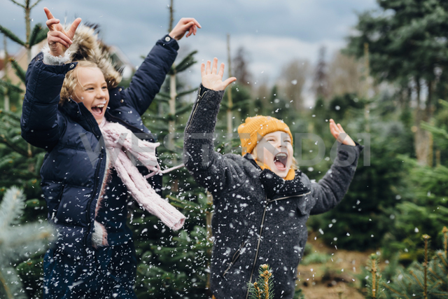 Brother and sister having fun with snow before Christmas - MJF02239