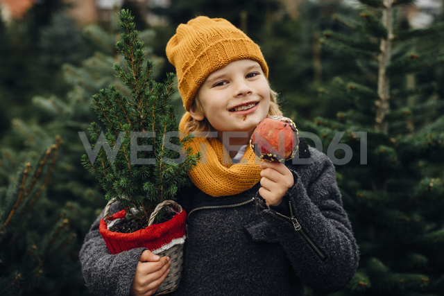Happy boy preparing for Christmas , holding potted tree, eating chocolate dipped apple - MJF02248 - Jana Mänz/Westend61