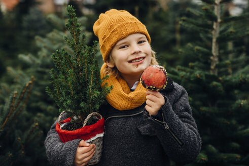 Happy boy preparing for Christmas , holding potted tree, eating chocolate dipped apple - MJF02248