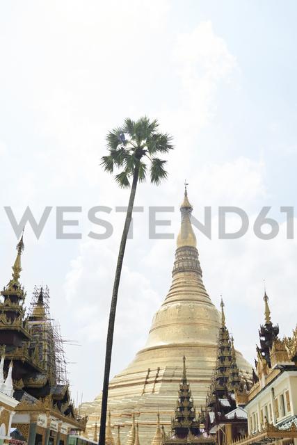 Myanmar, Yangon, Shwedagon Pagoda - IGGF00278