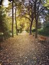 Germany, Berlin, Prenzlauer Berg, Leisepark - GWF05351