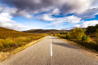 Great Britain, Scotland, Highlands, road - SMAF00905