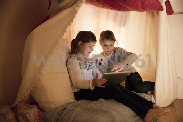 Two girls with dog and tablet in children's room - MOEF00554