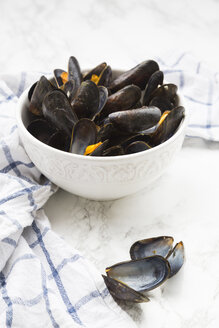 Fresh cooked blue mussels in bowl - LVF06559