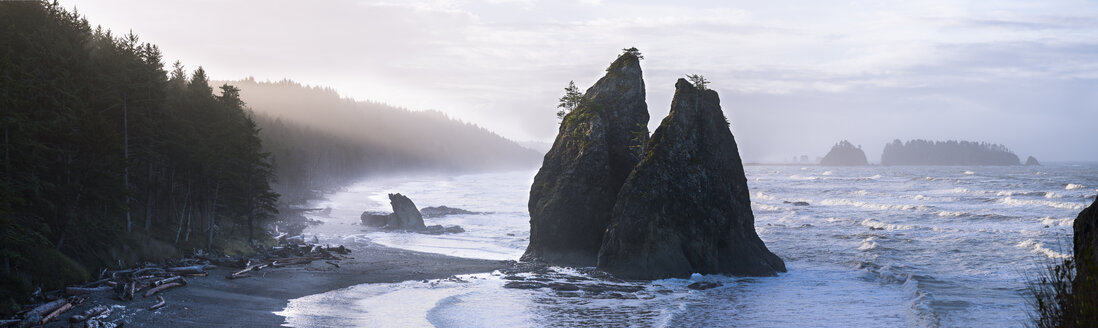 USA, Washington State, Olympic National Park, Seastack at Rialto beach - STCF00368