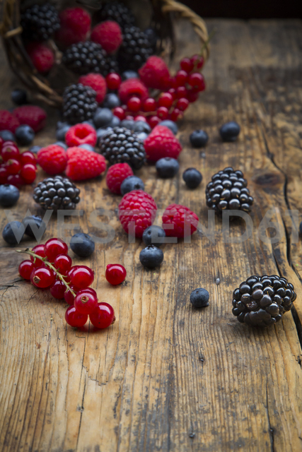 Various berries on wood - LVF06566