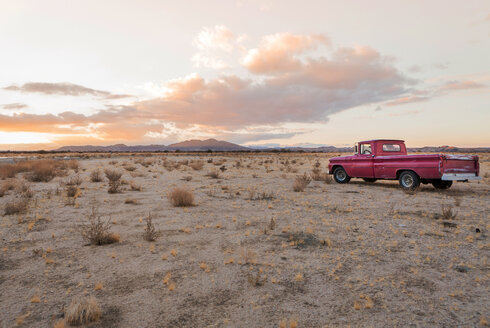 USA, California, Joshua Tree,  Pick-Up truck in the desert of Joshua Tree - WVF00855