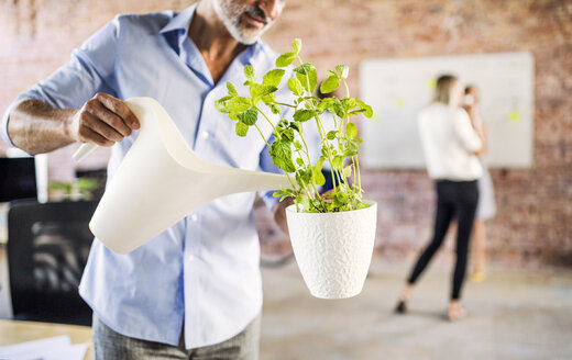 Businessman watering plant in office with colleagues in background - HAPF02582
