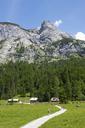 Austria, Upper Austria, Salzkammergut, Gosau, Holzmeisteralm, Dachstein massif - WWF04036