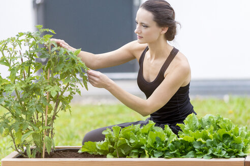 Young woman harvesting, bed with salad and herbs in garden - MMAF00225