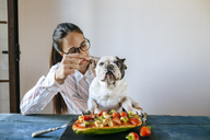 Woman feeding french bulldog at table - KIJF01837