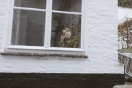 Smiling little girl looking out of window - KMKF00118