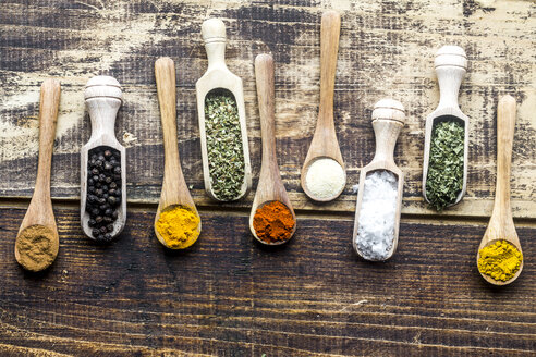 Spicies, curry, chilli, cinnamon, curcuma, garlic, parsley, oregano, salt and pepper on wooden spoons - SARF03463