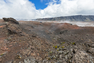 Reunion, Reunion National Park, Piton de la Fournaise, Route du volcan, Tourist in the Plaine des Sables - FOF09624