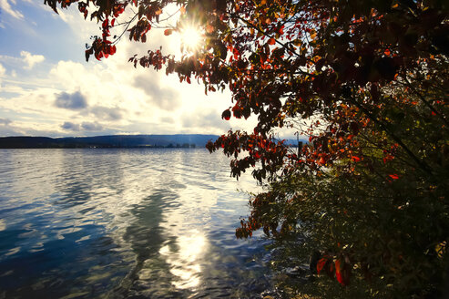 Lake Constance in autumn against the sun - JTF00882