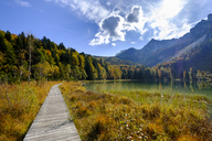 Germany, Bavaria, Upper Bavaria, Chiemgau, Inzell, Frillensee in autumn - LBF01729